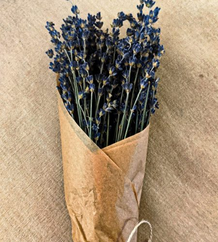 Lavender.Royal_Velvet.jpg